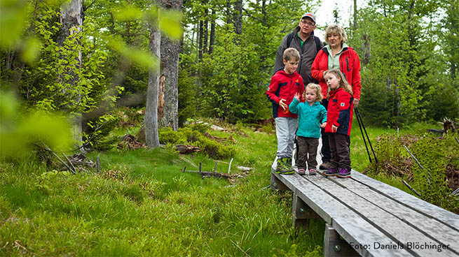 There are several family hiking trails in the national park.