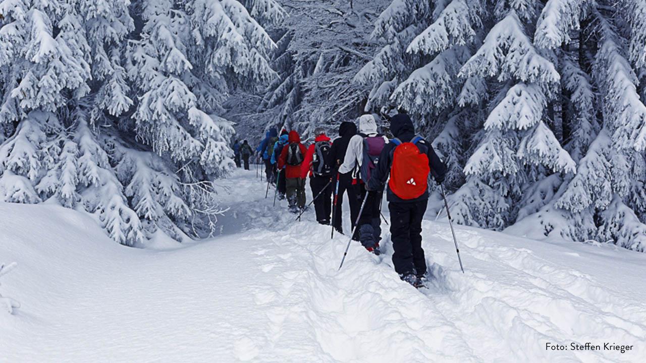 Schneeschuhwandern im Nationalpark Bayerischer Wald
