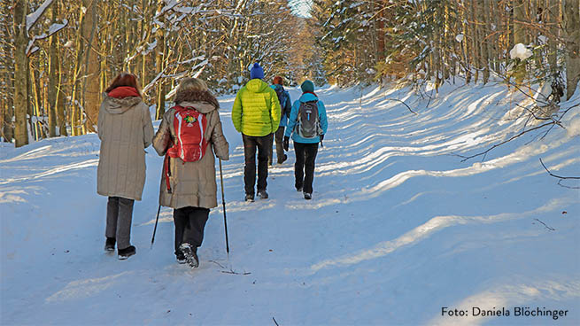 Even in winter, you can do a hiking tour - there are many rolled winter hiking trails at the lower areas.