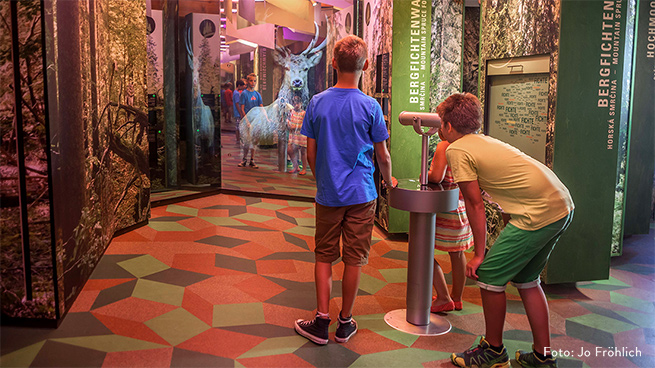 The national park exhibitions at our visitor facilities are appropriate for all ages.